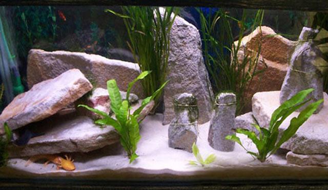 Декорации в аквариуме своими руками фото