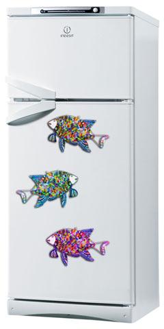 Рыбы на холодильнике