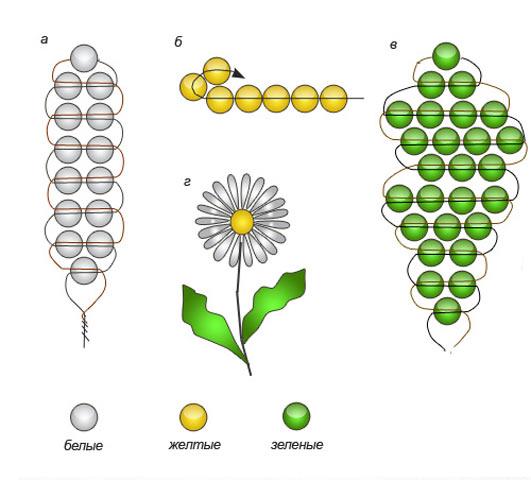 Особливості плетіння ромашки