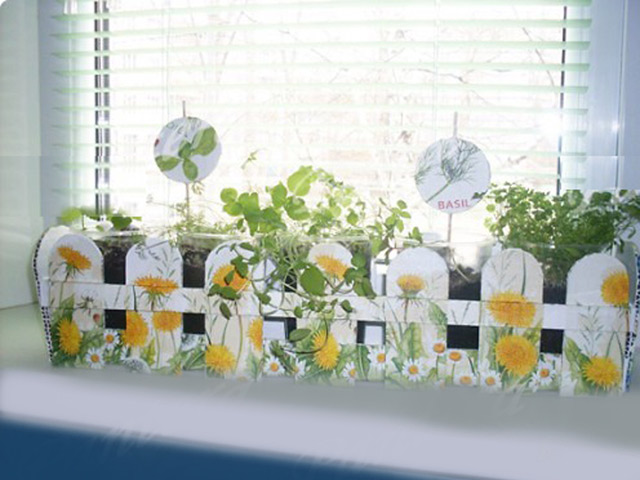Міні-садок на вікні