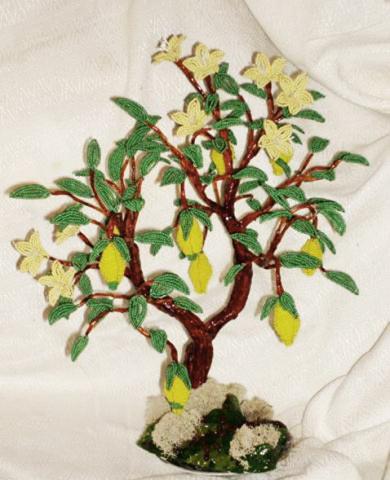 Апельсиновое дерево Лимонное