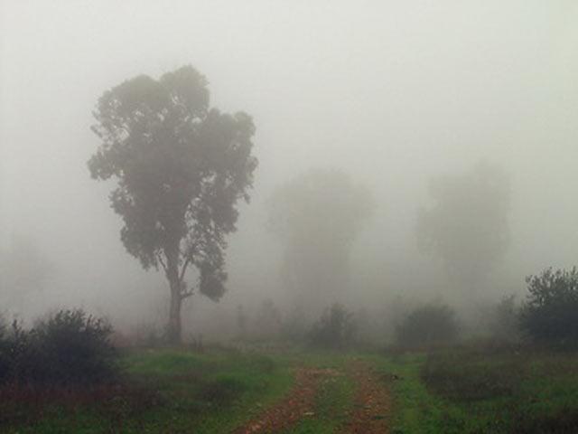 Туман після заходу сонця
