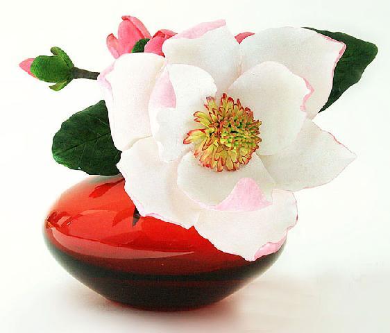 Спасибо Татьяне за наводку на магнолию.  Развернуть. kazi_mira.  Свернуть.  Цветок Магнолии.  20-10-2010.