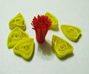 Деталі квітки