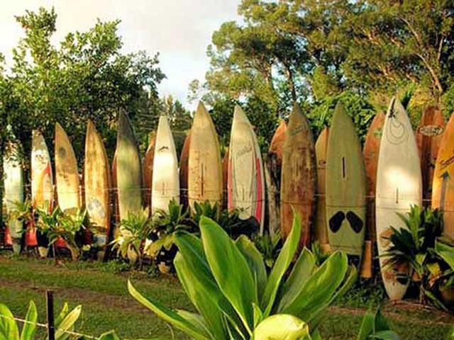 Из серфинговых досок на Гавайском побережье