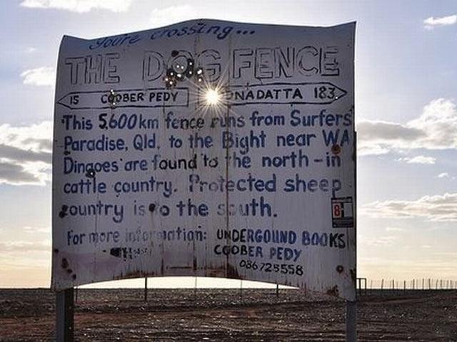 «Динго-ограждение» в Австралии