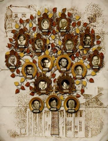 Глибокі коріння
