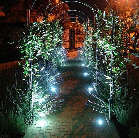 Вечером сад превращается в сказку…