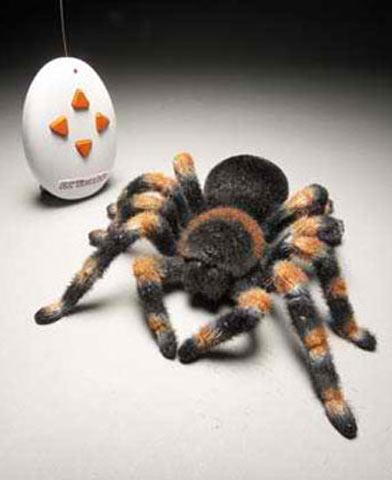 Игрушечный паук