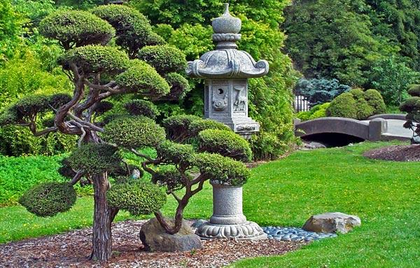 Растения как визуальные акценты в саду