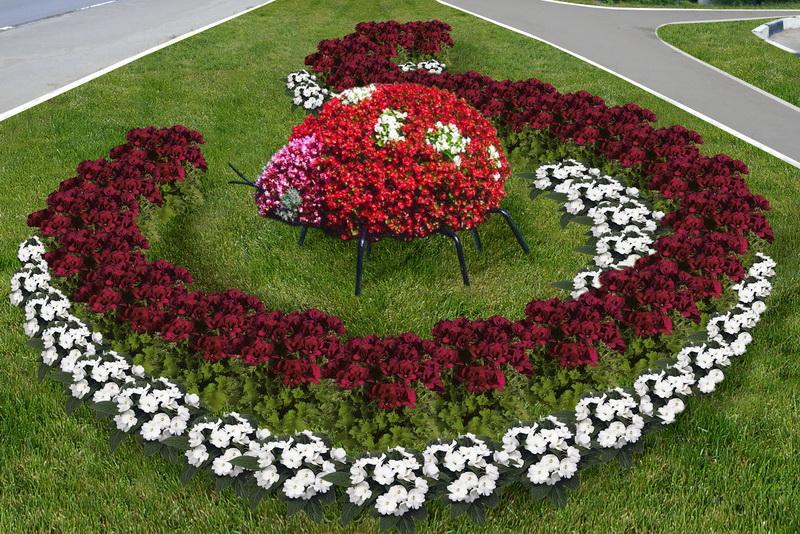 Идеи для цветущих клумб в саду!