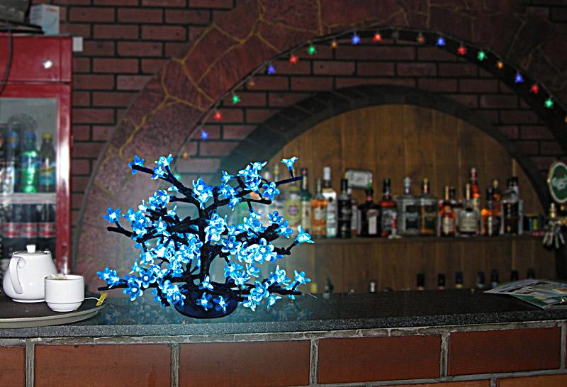 Світлодіоди широко застосовуються для декорування інтер'єрів