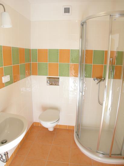 Выделить полезную площадь в ванной поможет душевая кабина вместо ванной