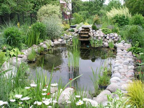 Естественный пруд